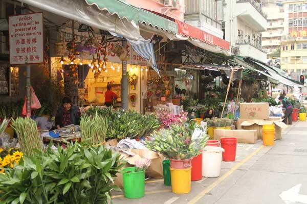 Installation du marché aux fleurs à Hong Kong