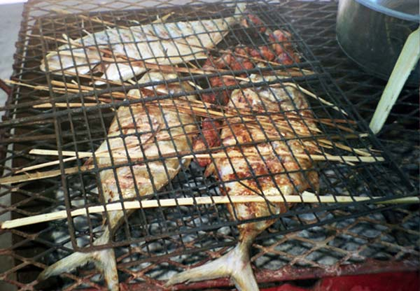 Barbecue de poissons grillés sur Aride