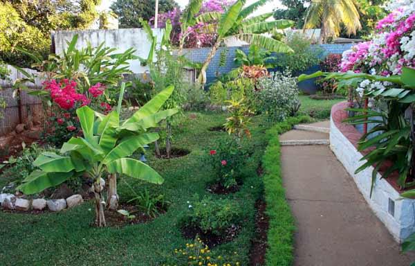 Le cadre verdoyant du Jardin Exotique à Diego Suarez