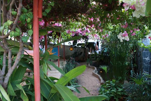 Jardin exotique du Jardin exotique à Diego Suarez