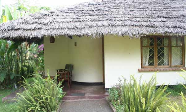 Petite terrasse du cottage
