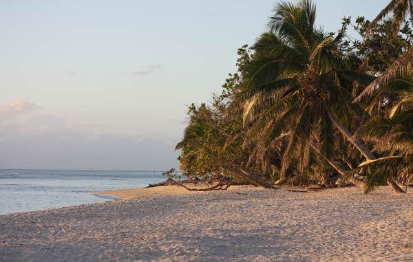 Plage avant les Lémuriens sur l'île aux Nattes