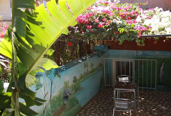 Terrasse ombragée devant une chambre du Jardin Exotique