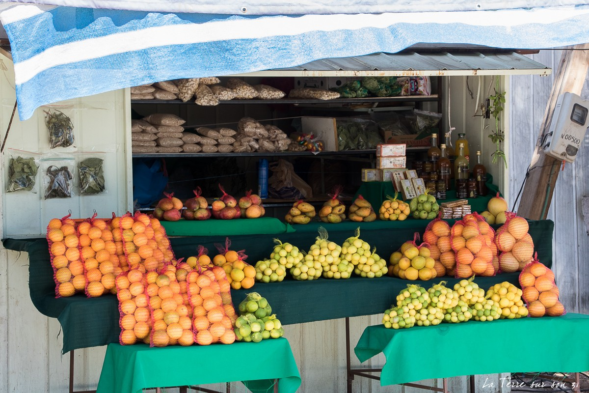 Marchand fruits oasis de Pica