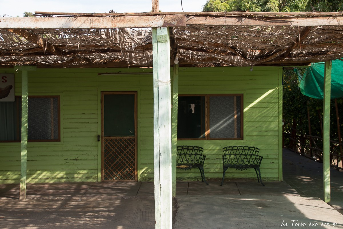 cabanas dona tato oasis pica chili
