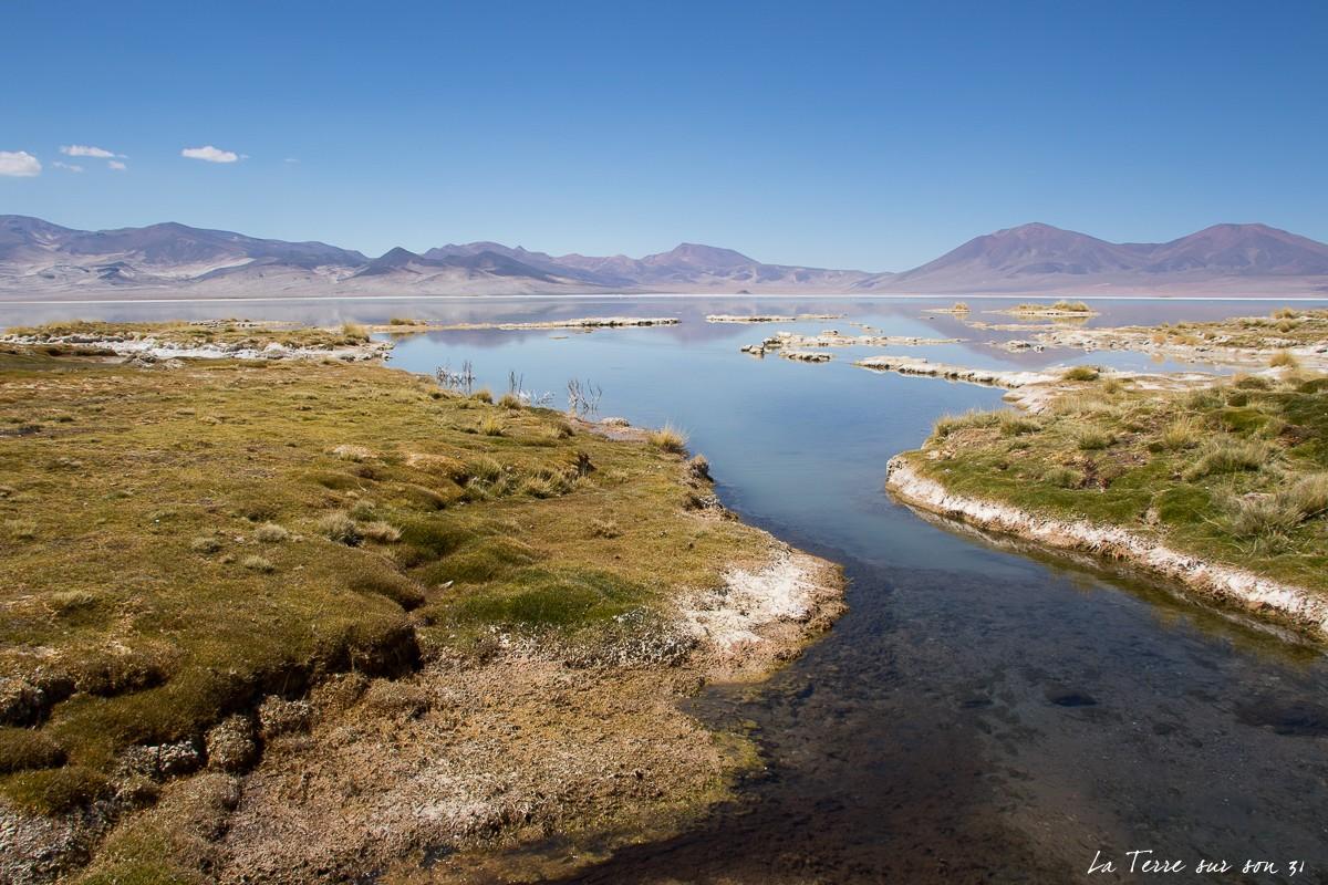 salar de huasco paysage chili
