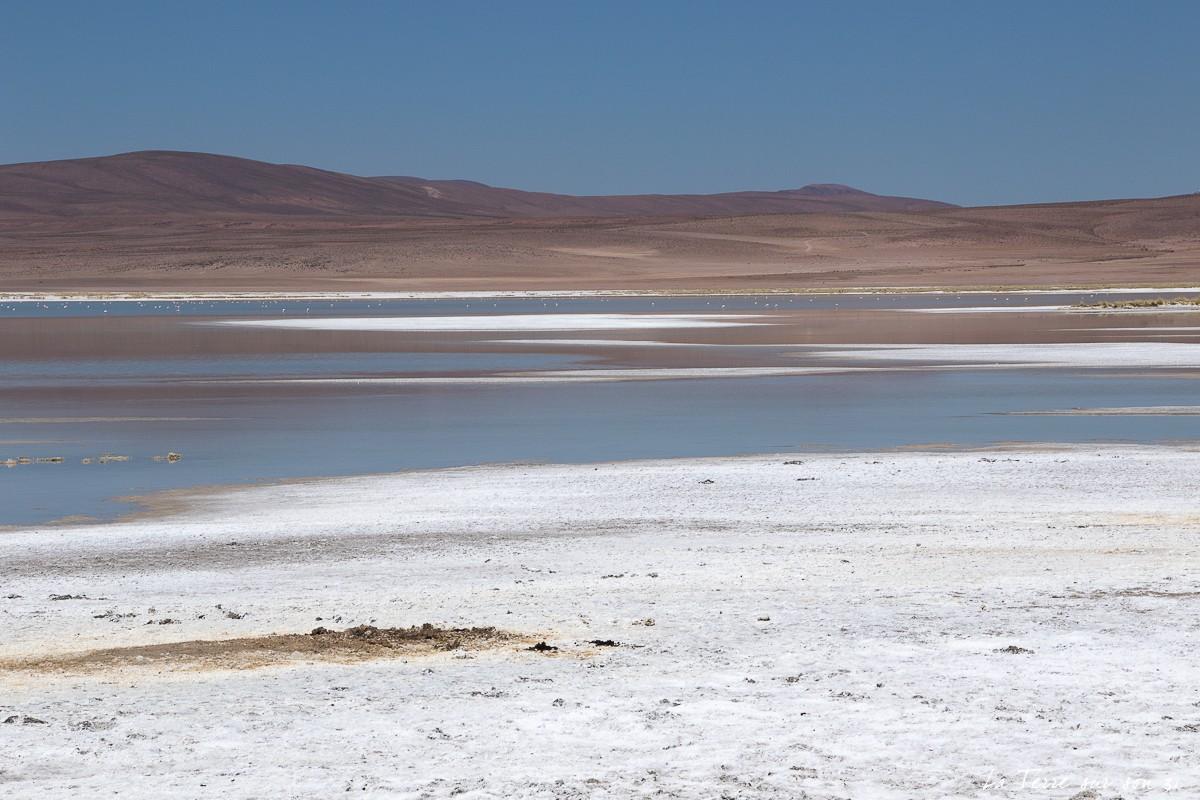 salar et lagune de huasco