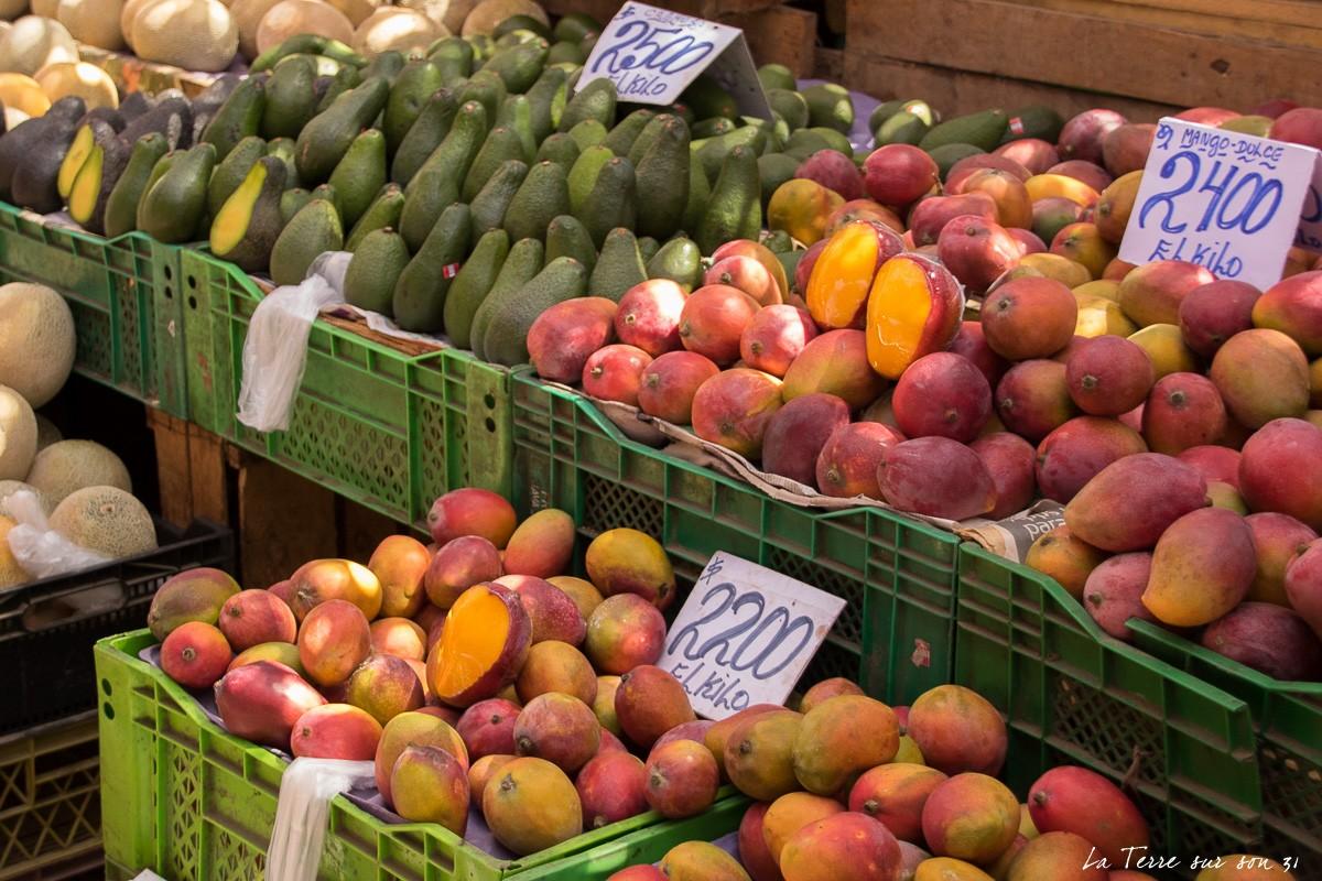fruits terminal Agropecuario Arica