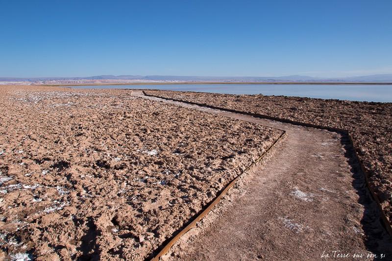 chemin lagune Tebenquiche