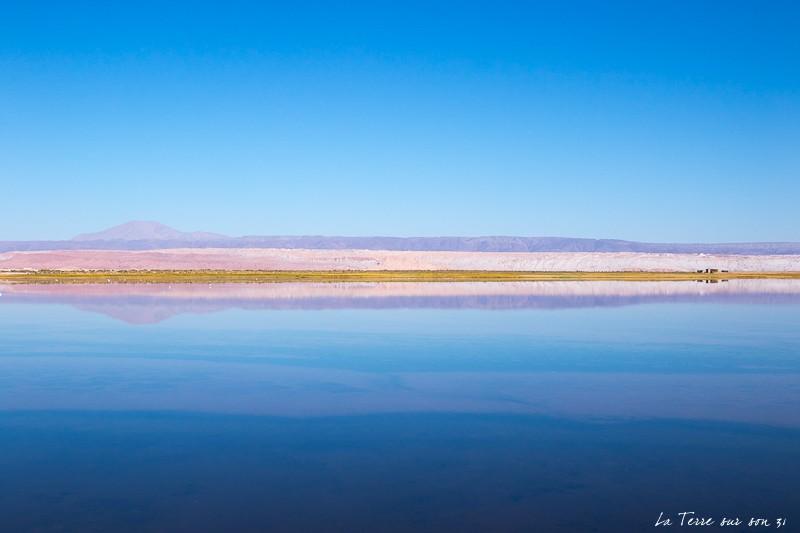 que voir dans le désert d'atacama : lagune Tebenquiche