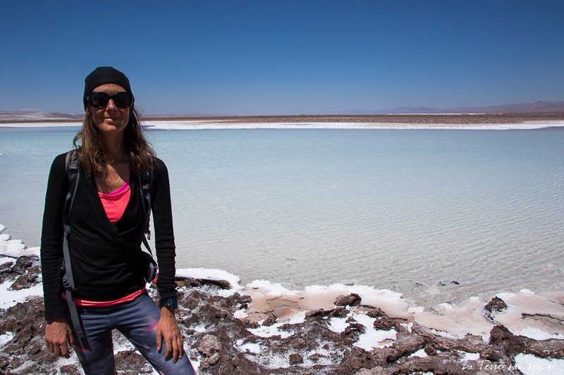 que voir dans le désert d'atacama : lagunes escondidas magiques