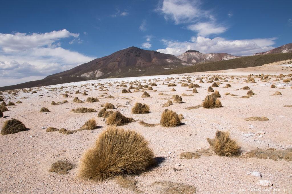 paysage puchuldiza chili