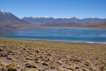 lagunes altiplanqiues désert d'Atacama chili