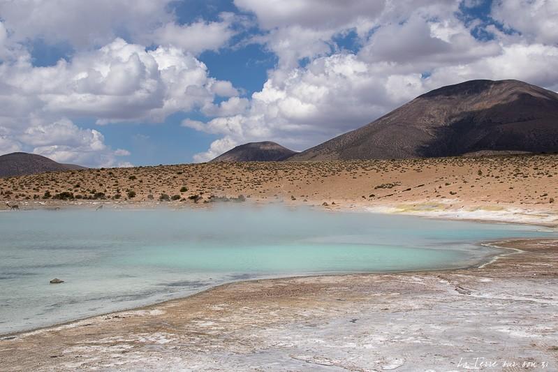 le désert d'Atacama, thermes polloqueree