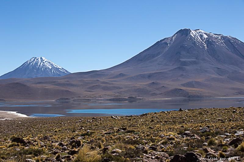 volcan lagunes altiplaniques
