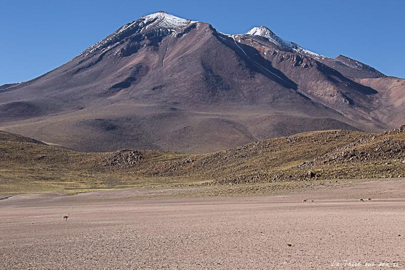 volcan miscanti