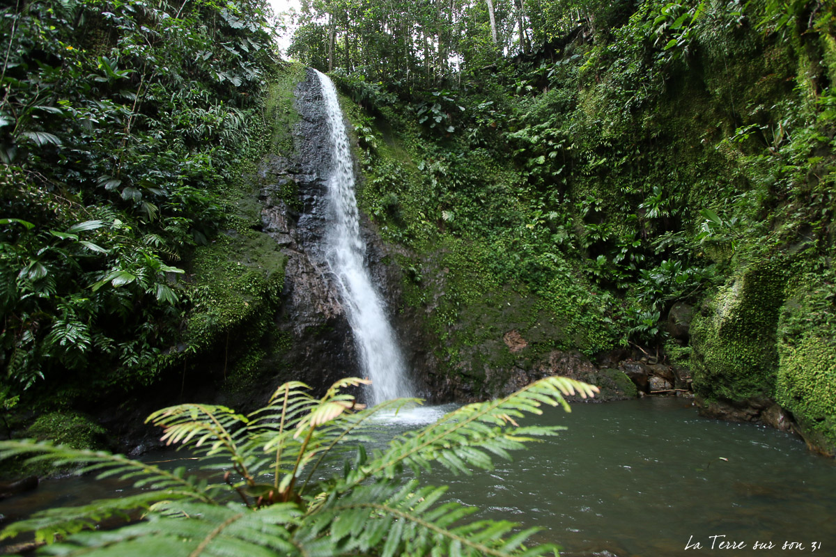 cascade de bois bananes lamentin guadeloupe