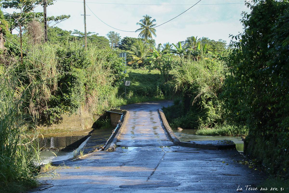 cascade de bois bananes pont parking