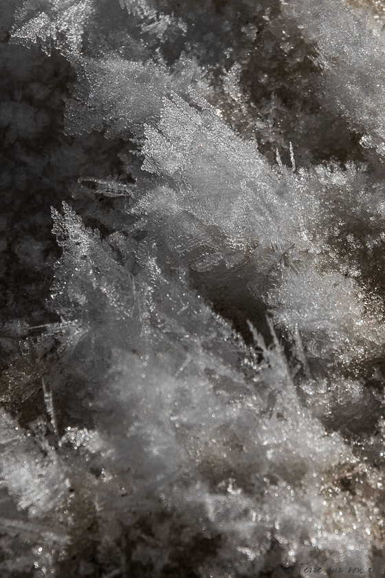 détail neige lac carezza