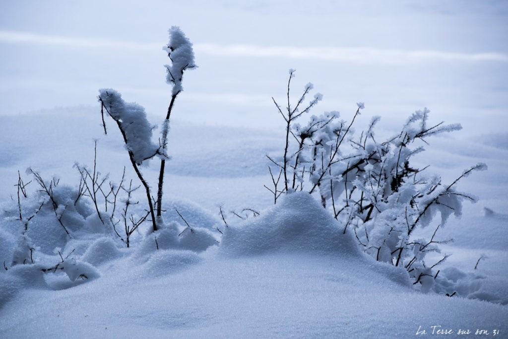 lac carezza neige