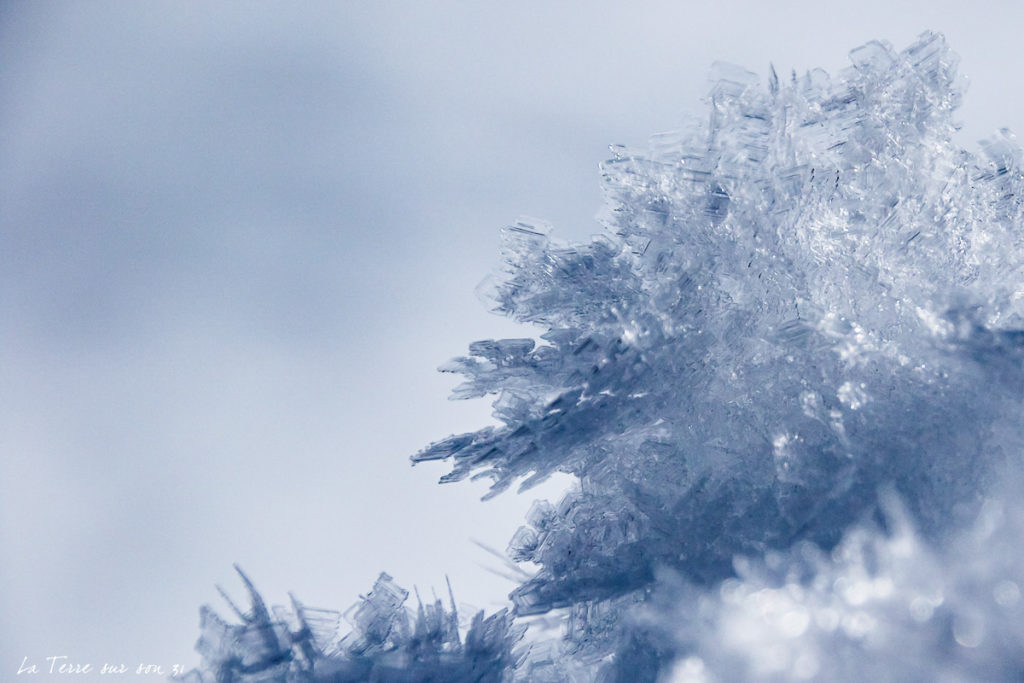 neige lac carezza dolomites