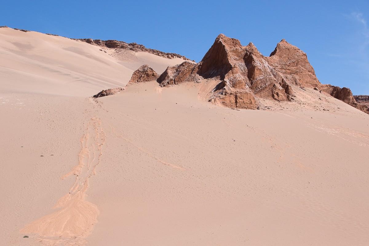 paysage désert atacama