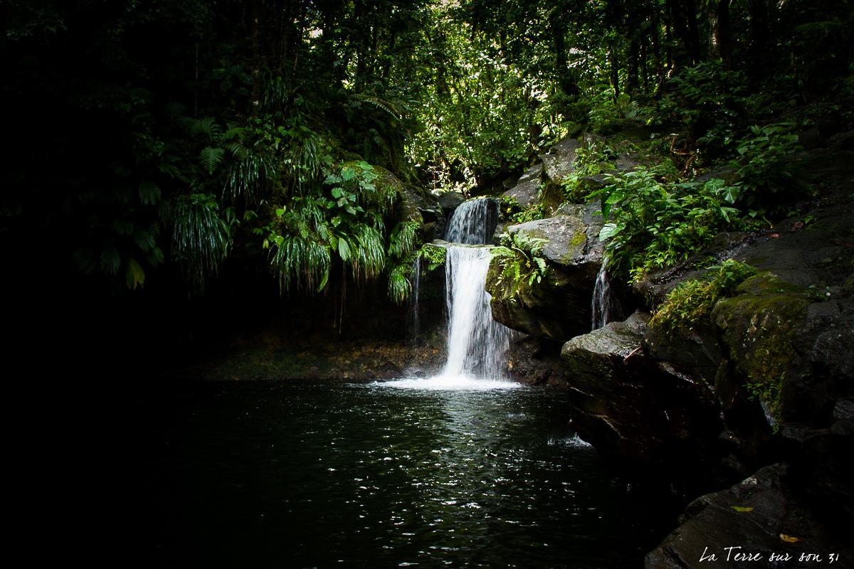 bassin paradise capesterre-belle-eau