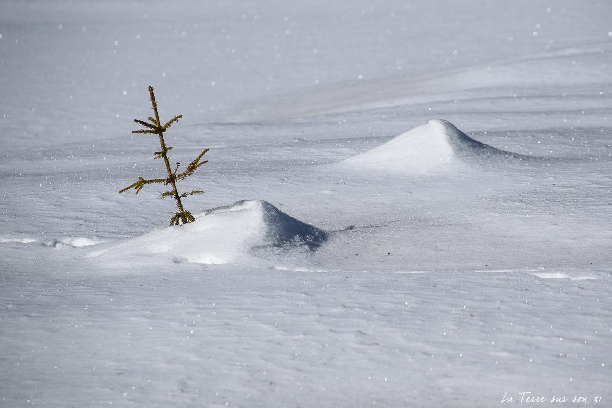 dolomites lac dobbiaco neige