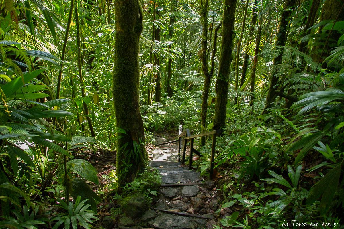 accès bassin paradise guadeloupe escalier