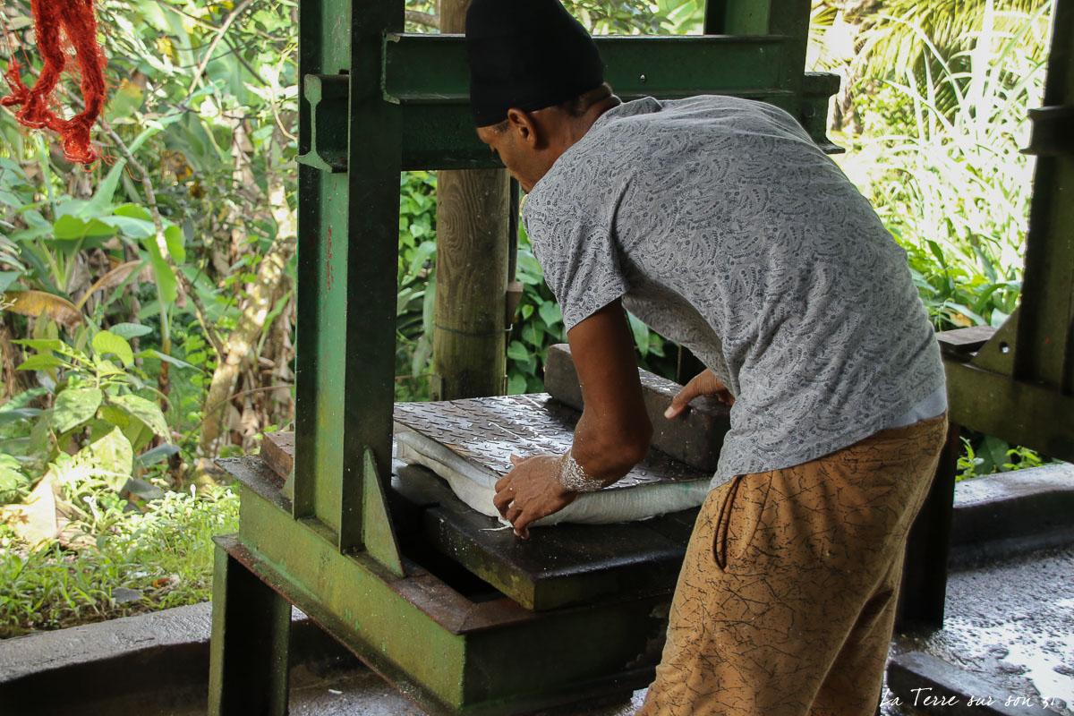 farine de manioc pressée