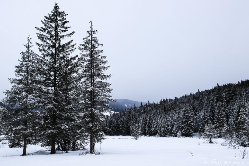 lac dobbiaco hiver février
