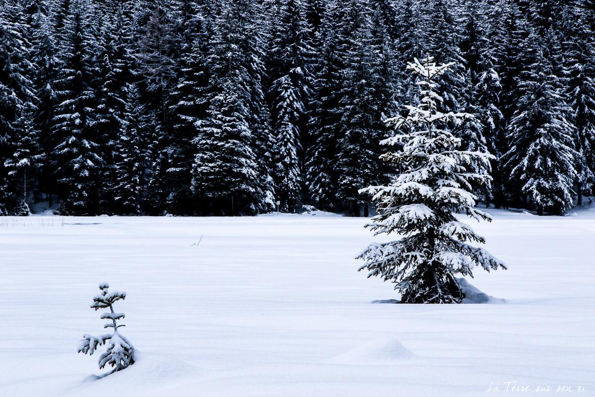 lac dobbiaco neige hiver