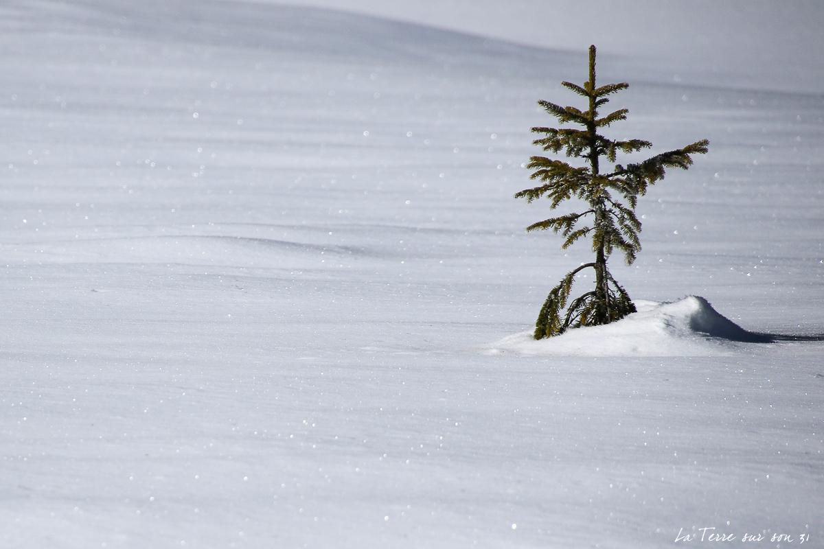 lac dobbiaco neige