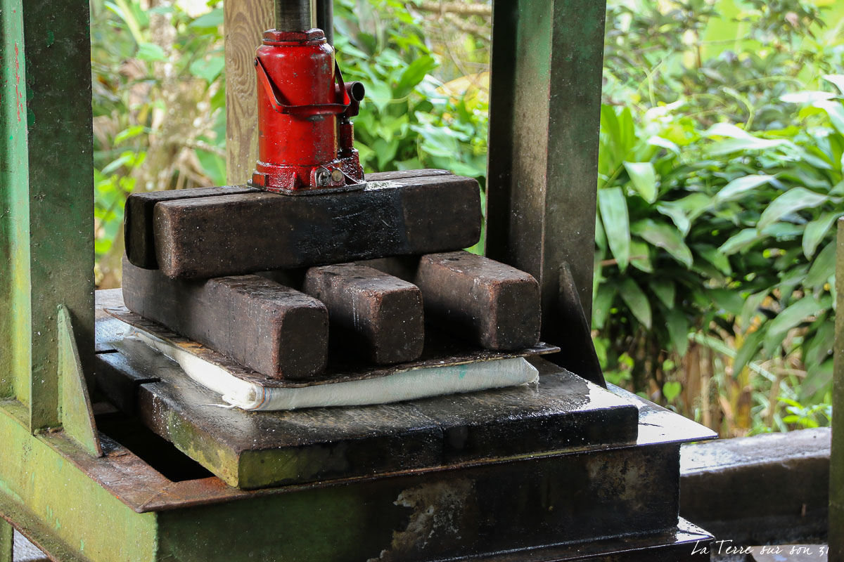 fabrication farine de manioc : la presse