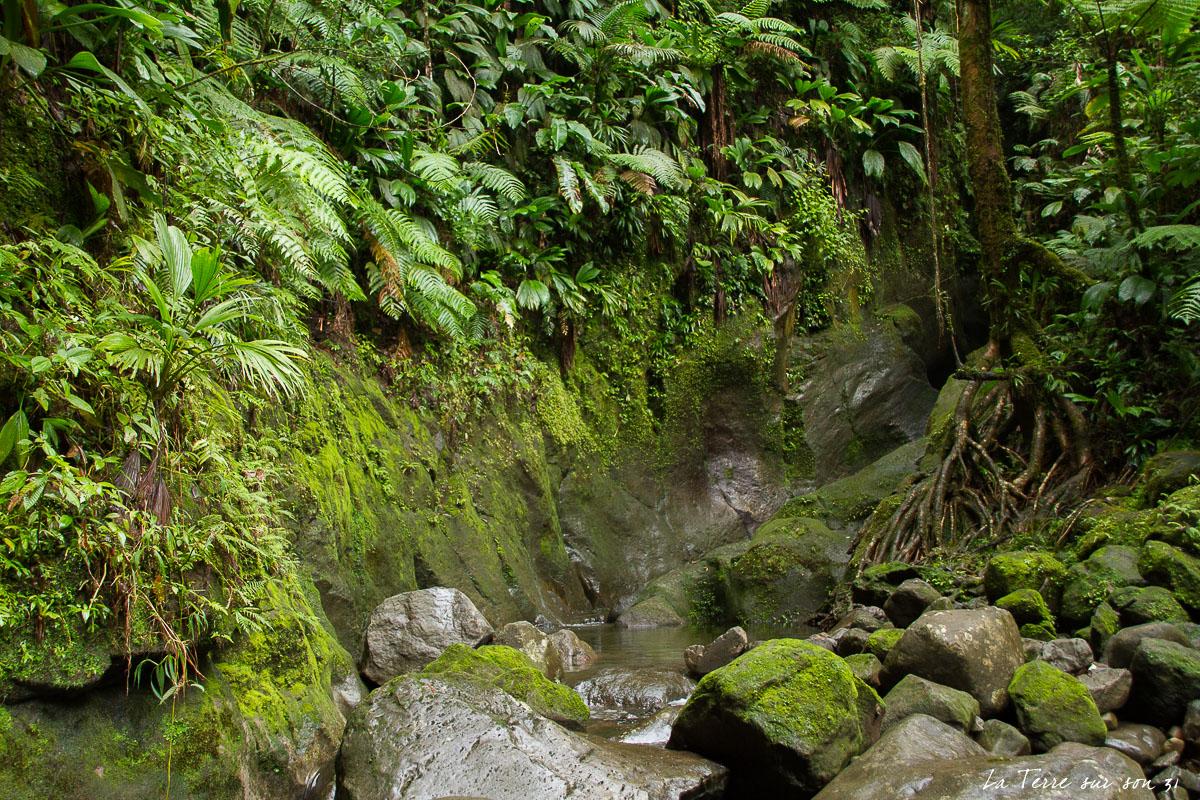source chaude rivière grosse corde
