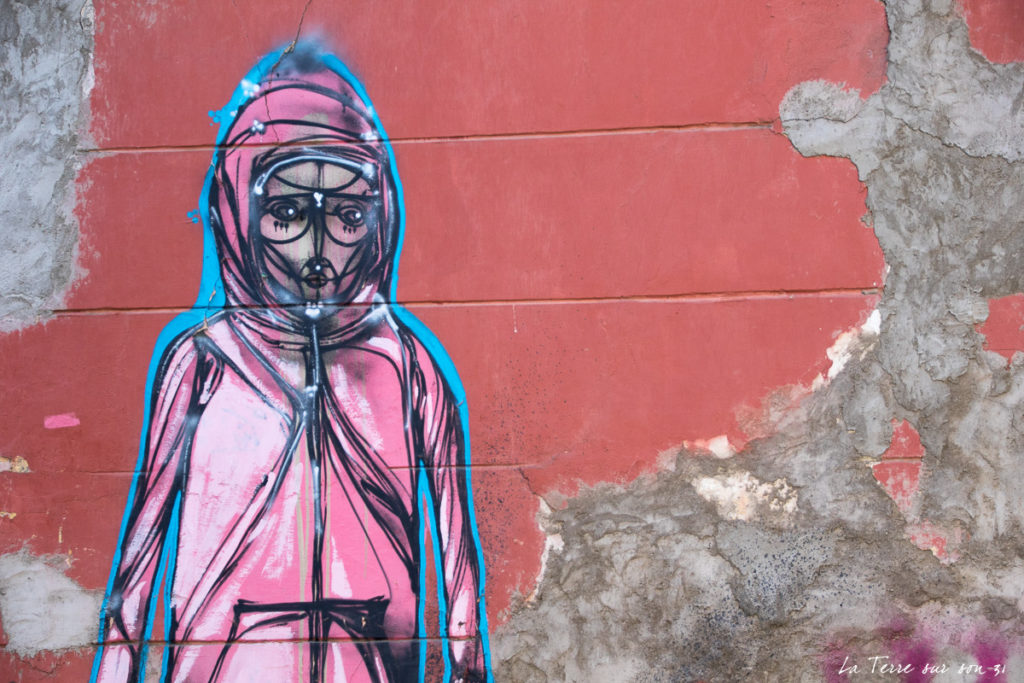 street art decouvrir santiago