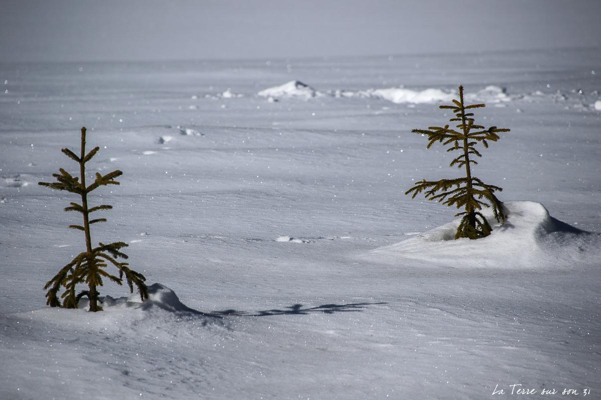 toblacher see neige