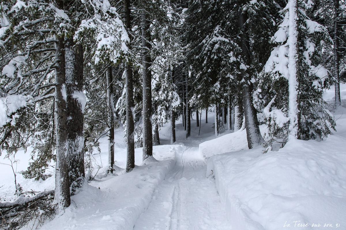 tour lac dobbiaco