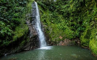 cascade de bois bananes guadeloupe