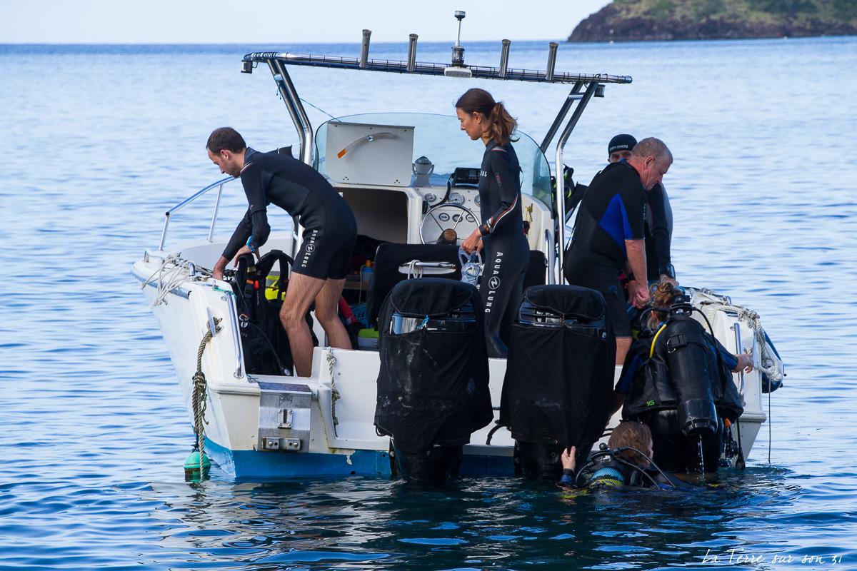 réserve cousteau guadeloupe
