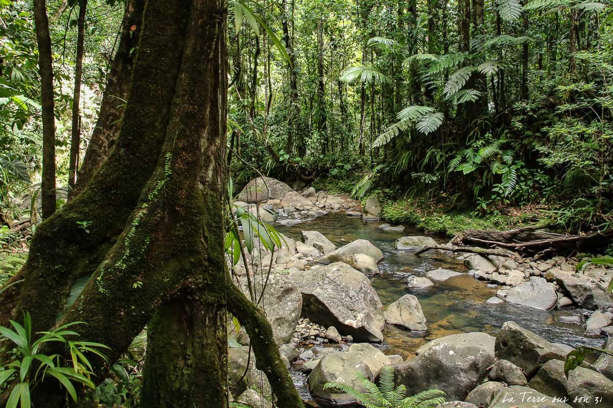 guadeloupe rando rivière quiock