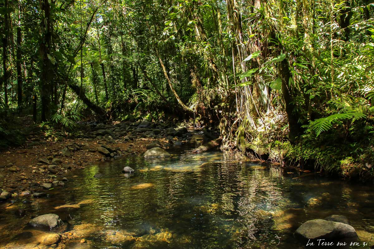 rivière quiock guadeloupe
